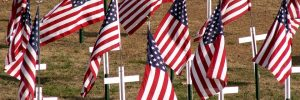 Happy Veterans Day from Tio Rico