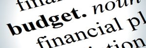 budget text